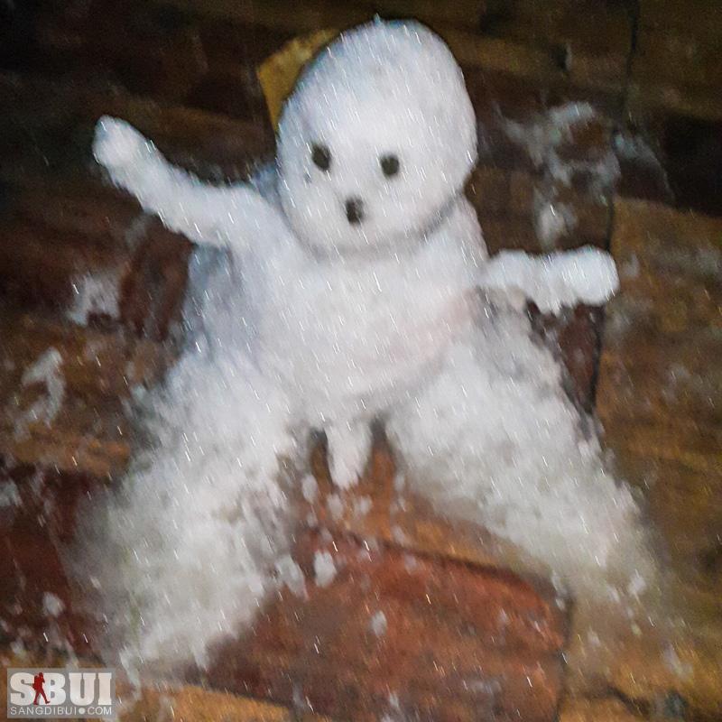 Đón tuyết ở Sa PA